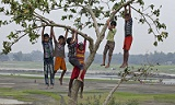 Bangladeshi children playing on a tree in the bank of the dried up river Kaliganga